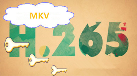Encoding Video Files to H.265/HEVC MKV