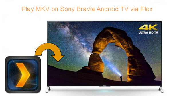 Can Plex App on Sony Bravia Android TV Playback HD MKV Files?