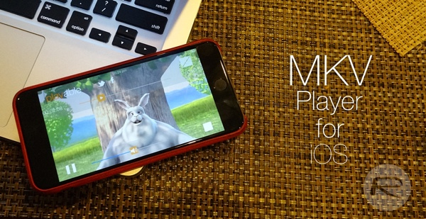 Top 10 Best iOS MKV Player for iPhone/iPad