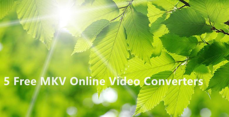 best free mkv converter Top 5 Free Online MKV Converter